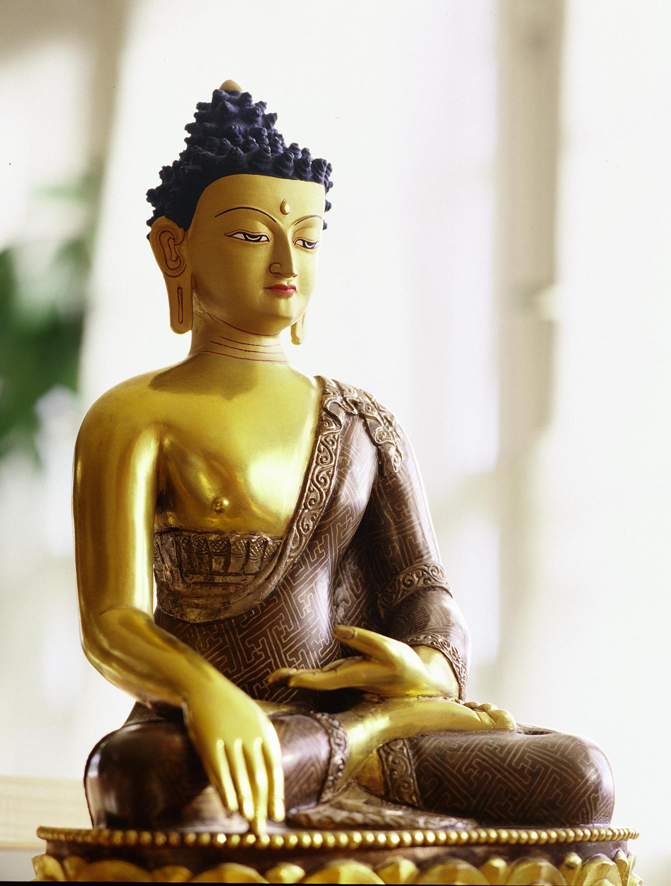 http://ambedkar.webs.com/Buddha/big_statue.jpg